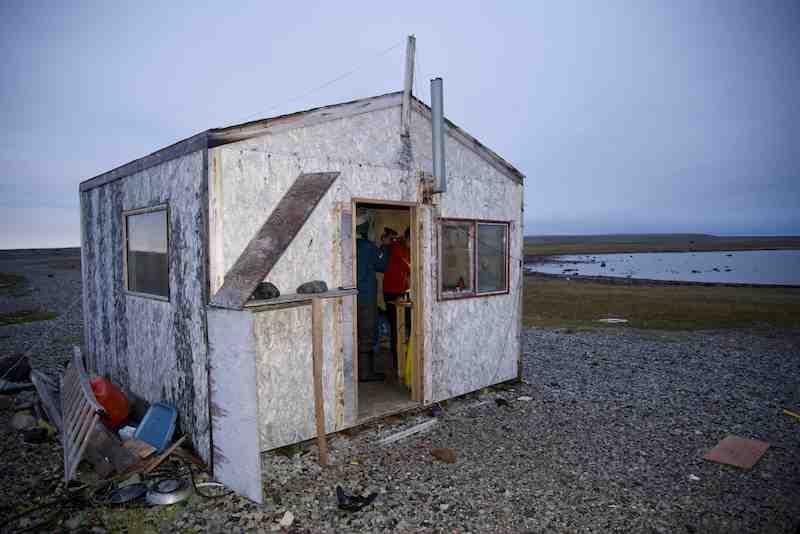 Cape Lady Franklin shelter cabin small
